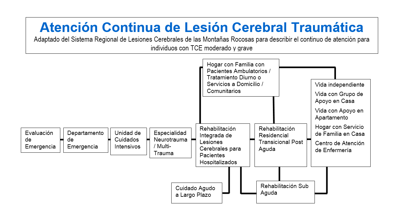 continuum-of-care-spanish